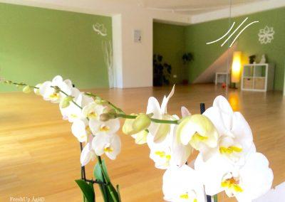Fresh Up Zone jóga studió Bécs jóga meditáció közösség magyar Bécs minden nap jóga FreshUp Ági